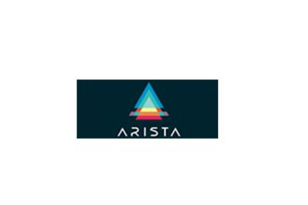 arista-construccion-y-mantenimiento